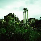 Temple of Castor and Pollux at the Roman Forum
