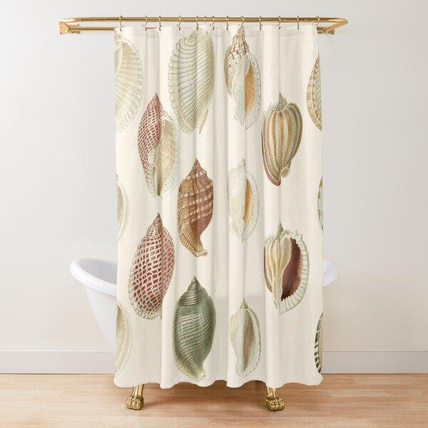 sea shells shower curtains redbubble