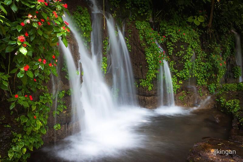 Jungle Waterfall And Flowers At Juayua El Salvador By Jjkingan Redbubble