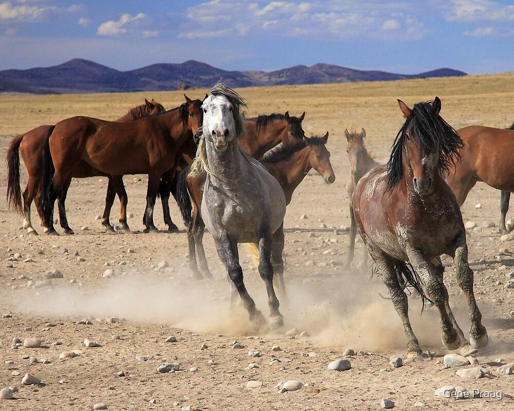 Running Horses Metal Artwork