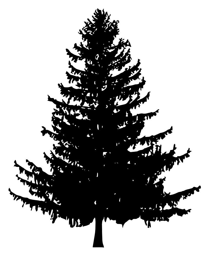 Pine Tree Silhouette By Katedill0n Redbubble