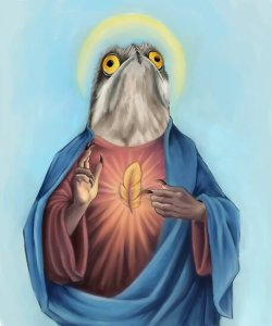 Our Lord and savior potoo bird  Posters by dragongirl222   Redbubble Our Lord and savior potoo bird by dragongirl222