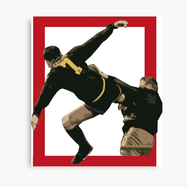 'the king', as he was known cantona, without a moment's hesitation he threw a roundhouse kick against the fan plus a couple of punches. Eric Cantona Antifascist Kung Fu Kick Canvas Print By Peppino93 Redbubble