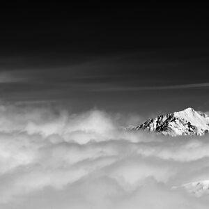Sierra by Zuzana D Photography