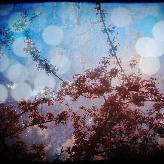 looking deeper by shadowdancer