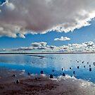 Lake Hart reflections by Alan Meyer