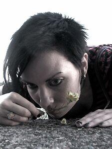 Dead flowers. Kuusisaari, Finland by © homesick