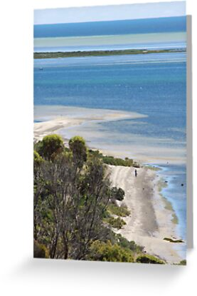 Walking Alone on Reeves Point, by Stephen Mitchell, on Redbubble