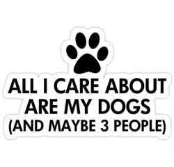 All I Care About Is My Dog Saying by ironydesigns