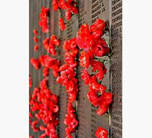 Lest We Forget Photographic Print by Stephen Mitchell