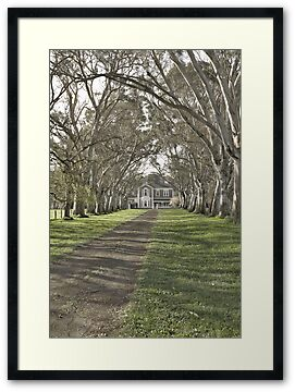 Oakbank House, by Stephen Mitchell, on Redbubble