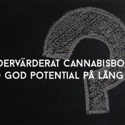 Undervärderat cannabisbolag med god potential på lång sikt