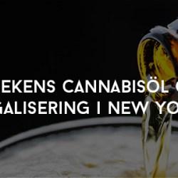 Heinekens cannabisöl och legalisering i New York