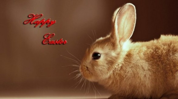 Easter Bunny Images 2020