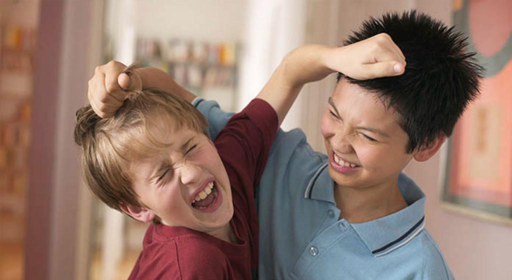 Почему ребенок дерется