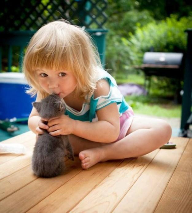 дети и коты