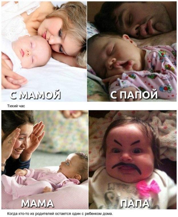 разница между папой и мамой