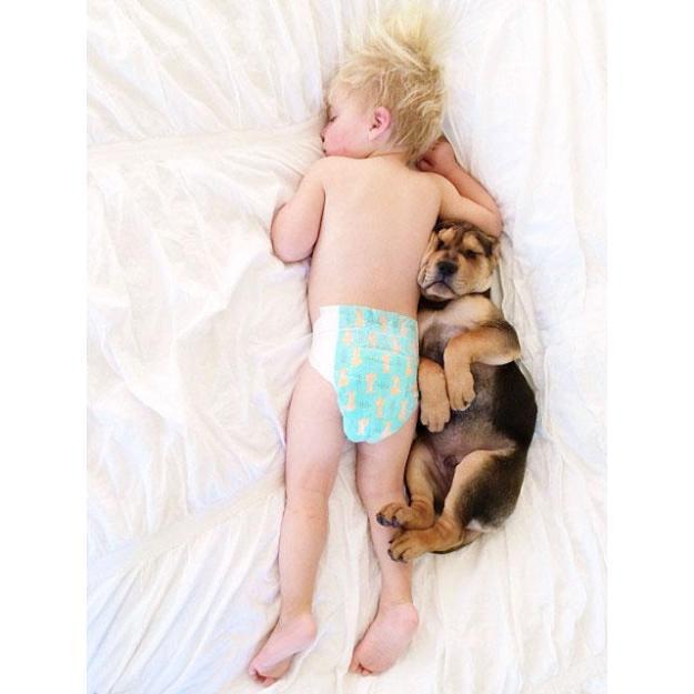 сладкая спящая парочка8