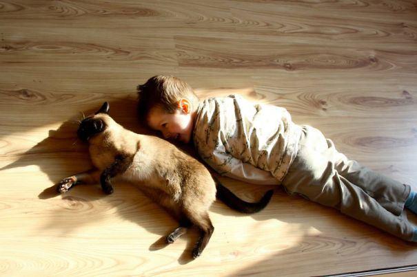 мальчик кот