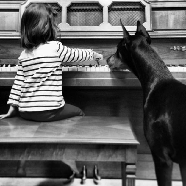 дружба девочки и пса