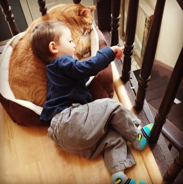 larry-cat-guardian-boy-abel-4