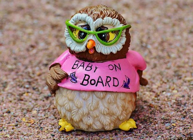 owl-947735_640