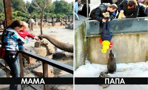 Поход в зоопарк