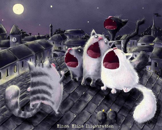 забавные коты элины эллис
