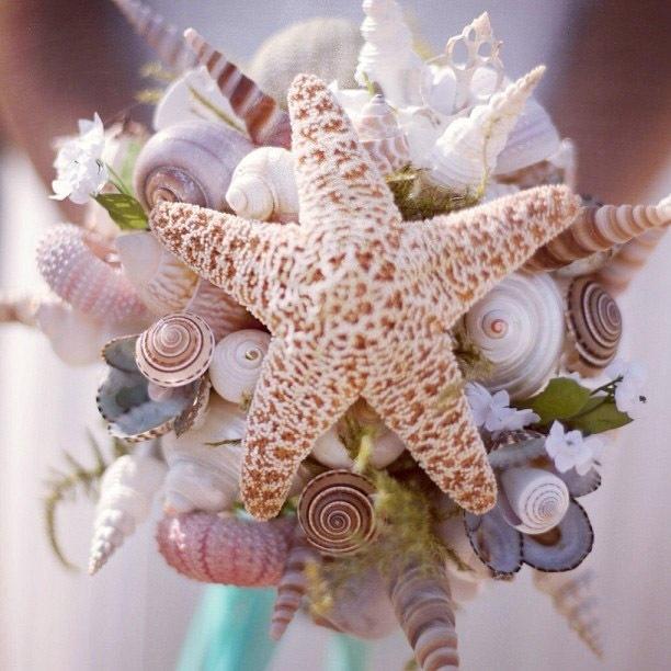 Красота из ракушек и морских звезд