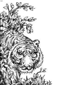 Антистресс тигр