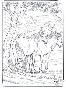 Антистресс милые лошадки