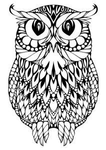 Раскраска для взрослых большая сова