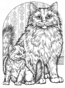 Антистресс раскраски кошка и котенок