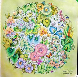 Удивительные джунгли Книга для творчества и вдохновения