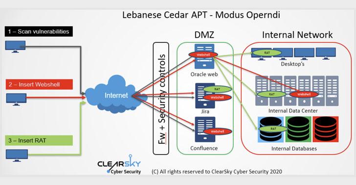 Lebanese Cedar APT