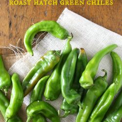 roasting hatch chiles pic