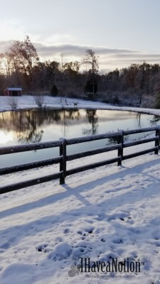 Winter-snow on the pond