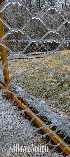 Ice storm one