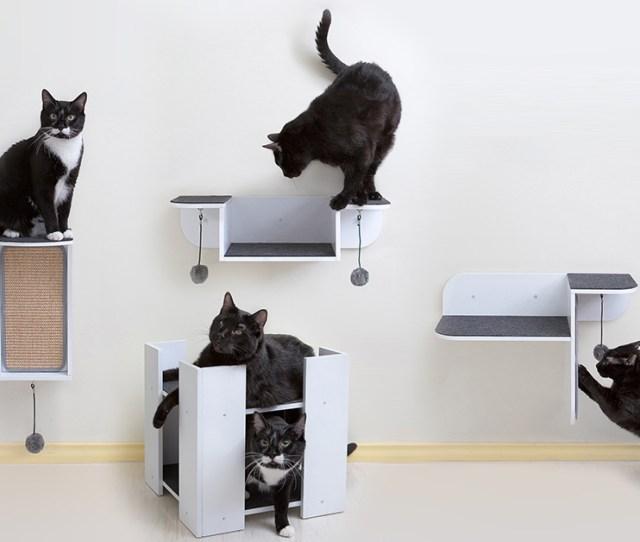 Modern Cat Shelves And Scratchers