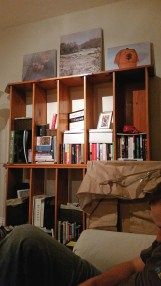 My dad made these bookshelves for my Masoni.