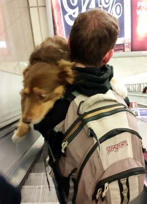 First Tube ride, going down the escalator to his doom