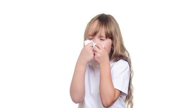 想減少梅雨季過敏,兒科醫師教你除濕機這樣開,保護氣管、消滅塵蹣