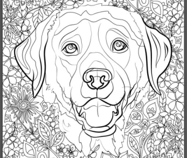 De Stress With Dogs Downloadable  Page Coloring Book For Adults