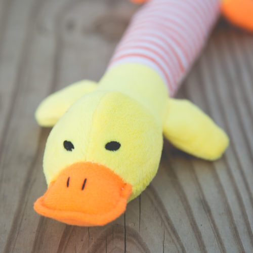 Project Play Duck Squeaky Toy: Get a Toy, Give a Toy to a Shelter Dog In Need