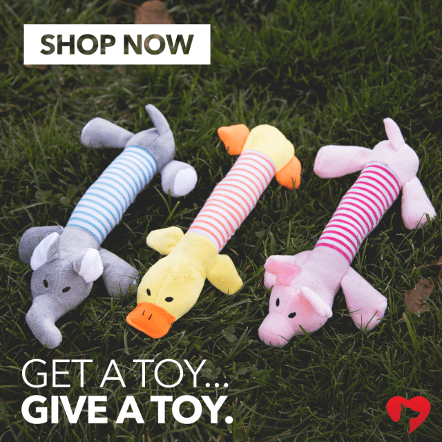 Get a toy give a toy shop now