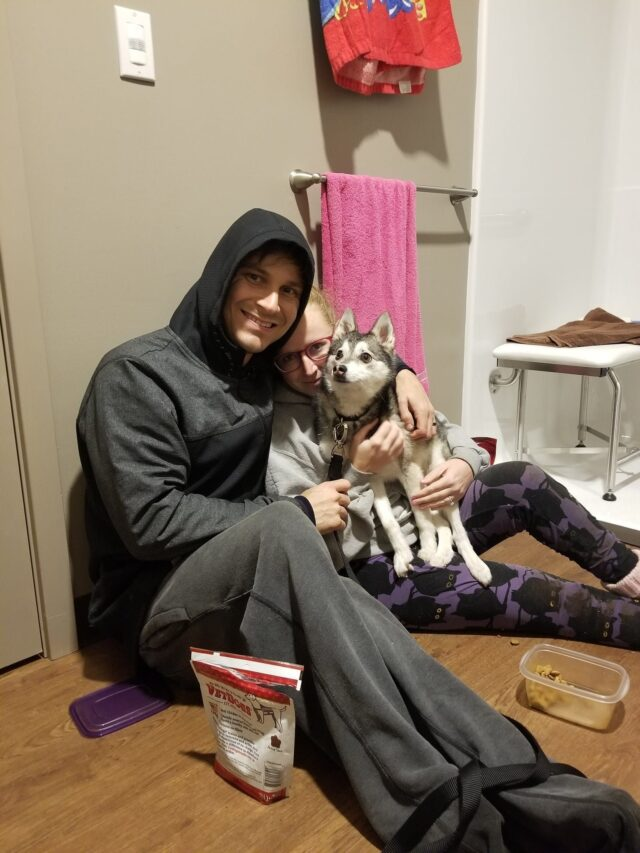 Couple reunited with dog