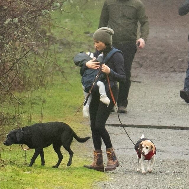 Meghan Markle walking dogs