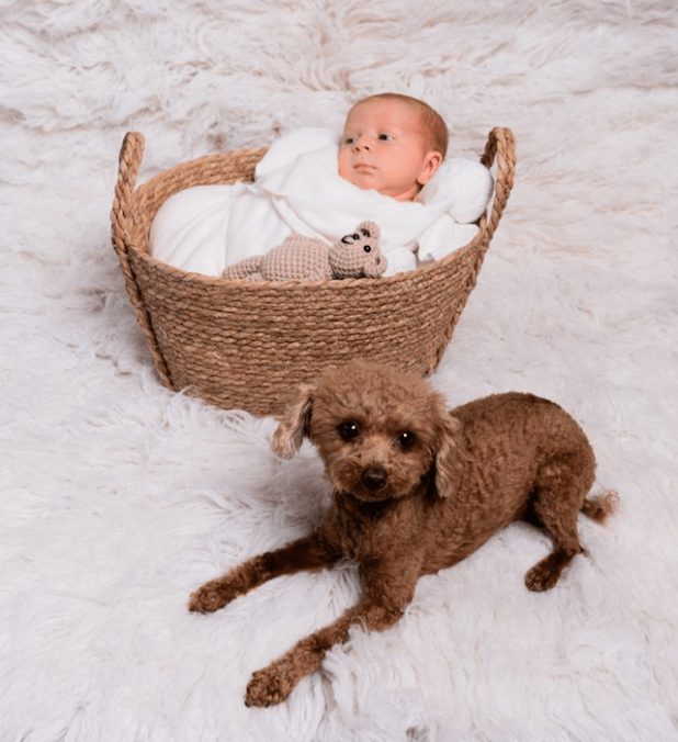 Baby and Small Dog