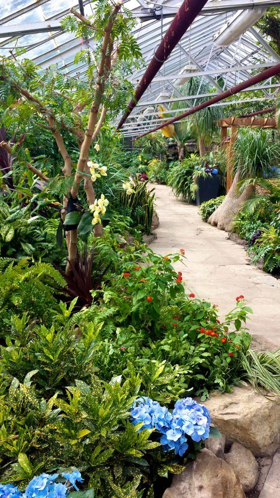 Gage Park Greenhouse