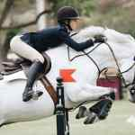 Tips To Fall From A Horse As Safely As Possible